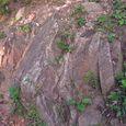 十三峠越え道-26 (頂上付近の岩)