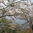 十三峠越え道-109 (水呑地蔵堂前の展望台から)