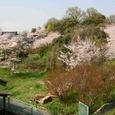 十三峠越え道-111 (里の春)