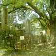 大阪市天王寺区真田山にある旧陸軍墓地-3