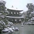雪の慈照寺 5(銀閣-観音堂)