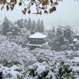 雪の慈照寺 4(銀閣-観音堂遠望)