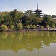 猿沢の池から望む興福寺五重塔