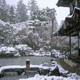 雪の慈照寺 1(銀閣-観音堂)
