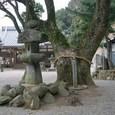 玉祖神社 7:境内