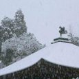 降りしきる雪と銀閣の鳳凰