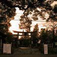 夕べの迫り来る今熊野神社