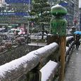 雪の三条大橋を渡る人々 2