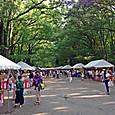京都、下鴨神社古本市より