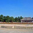 興福寺の伽藍再建が…