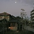 有明の月 (その2)