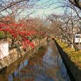 玉串川秋景-4