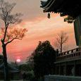 智積院本堂から見た夕日