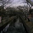 早朝の玉串川