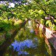 玉串川情景2(南向き)