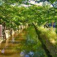 玉串川情景1(北向き)