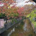 玉串川秋景-1